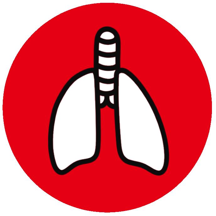 肺アイコン